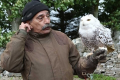Pedro Soltani with a snowy owl at the annual Feile Anagaire on Sunday.